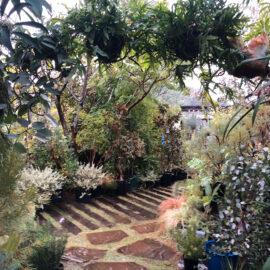 緑に囲まれる癒しの空間