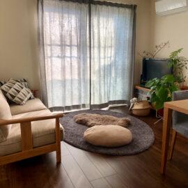 新しい暮らしの家具選び、ご相談ください
